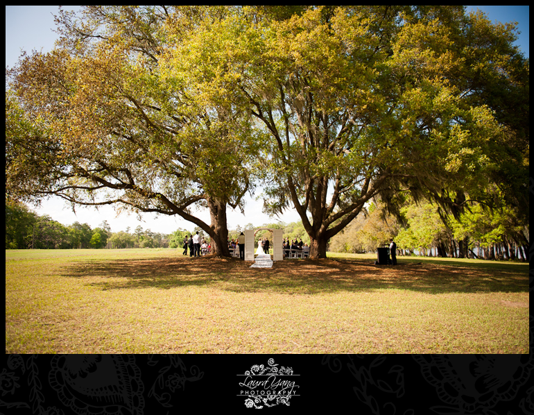 Amber daniel a honey lake plantation wedding part ii for Honey lake plantation